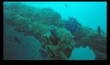 Capture d'écran 2016-02-16 à 18.30.22