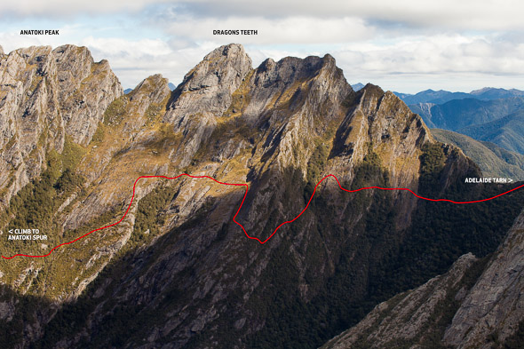 Approx line of the 'High Traverse' beneath Dragon's Teeth and Anatoki Peak.